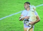 OFICIAL: Até o cachorro está nas oitavas da Libertadores e o Palmeiras não