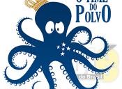 """Cruzeiro corrige gafe em marketing: """"não era time do Povo, é do POLVO"""" ENTENDA!"""